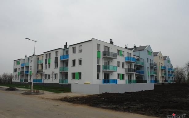 Smardzowska 1499946