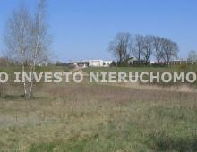 Działka, na sprzedaż, Gruszczyn, 16800 m2 5328703