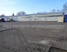 Lokal komercyjny, na wynajem, Poznań, 6500 m2 1396060