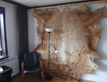 Mieszkanie, na sprzedaż, Warszawa, 100 m2 433677
