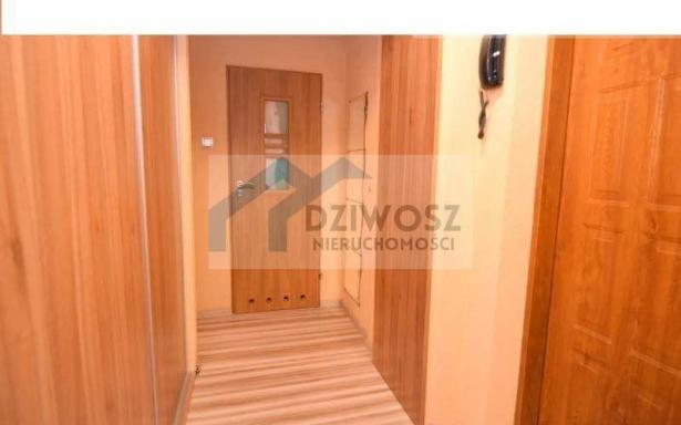 Mieszkanie, na sprzedaż, Wrocław, Młodych Techników, 40 m2 5245918